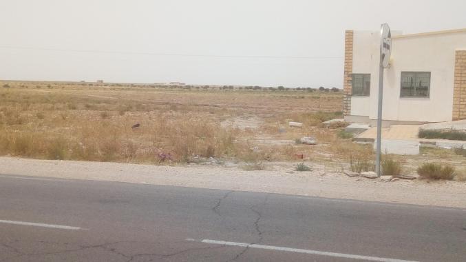 ارض للبيع كدية موسى على الطريق 17 بين القصرين وفريانة