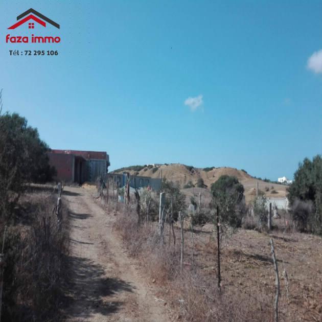 terrain  a vendre  a Hamem Lghzez  Zahra