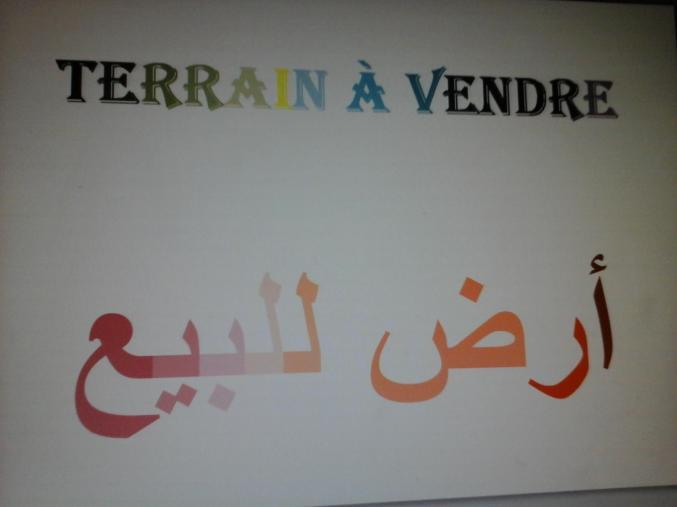 Terrain à vendre à Bir Ali Ben Khlifa