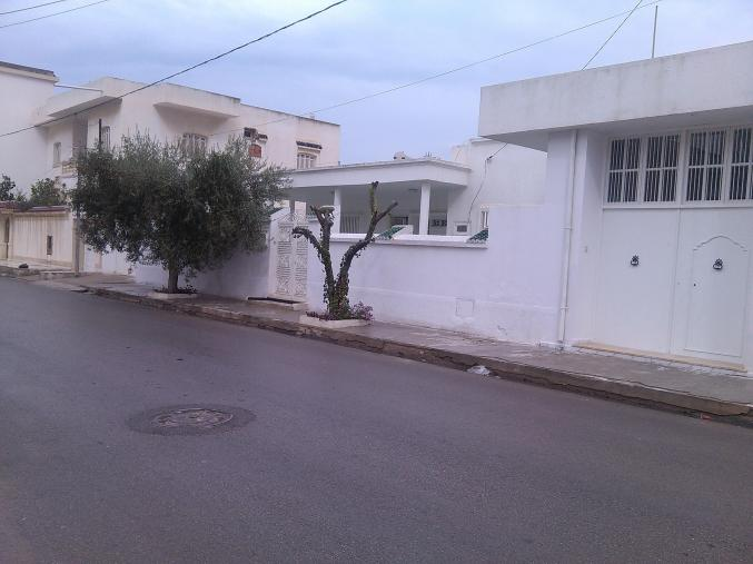 villa avec local commercial 500m2