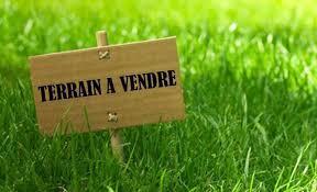 http://www.firsthome-realestate.com/property/terrain-de-500m%C2%B2-vente-a-gammarth-superieur/
