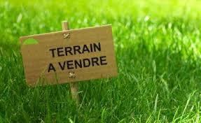570 hectares à Sidi Bouzid titre bleu