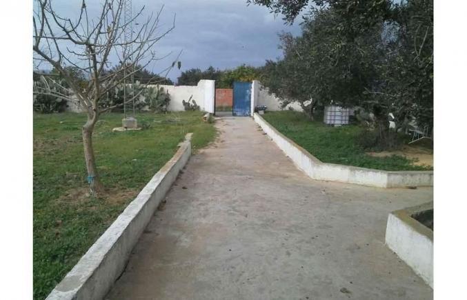 Maison avec large jardin