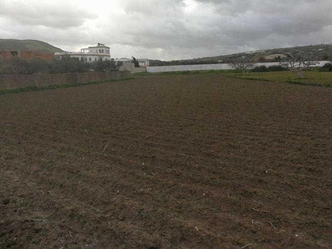Un terrain de 2875 m² à Chatt Mami Bizerte