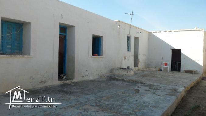 maison 500 m² a zone ilwahab (chebba)