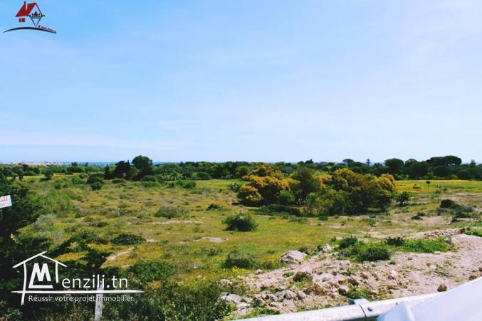 un terrain à hamem ghzez