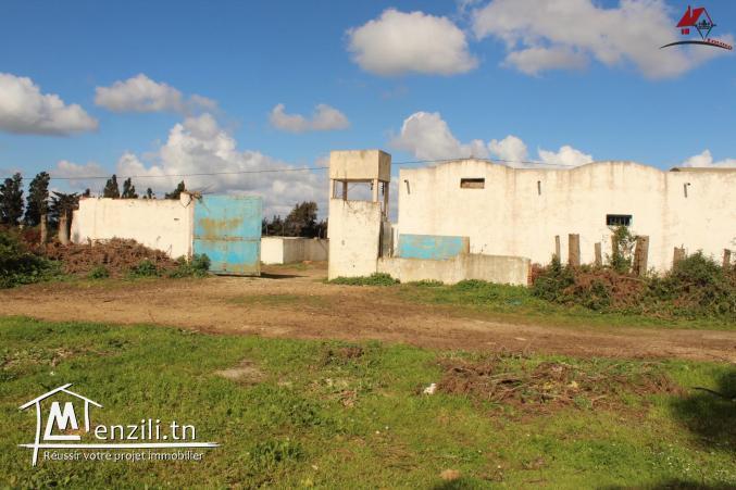 une ferme à kélibia