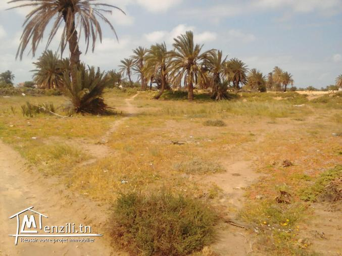 Annonces et agences immobilieres en tunisie for Agence immobiliere zaghouan