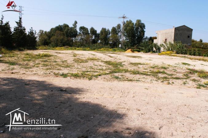 offre spéciale 2300 m² à Kélibia