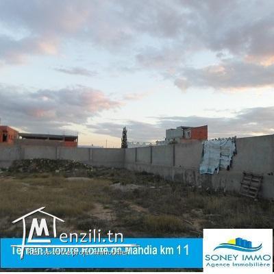 TERRAIN CLÔTURÉ ROUTE DE MAHDIA KM 11
