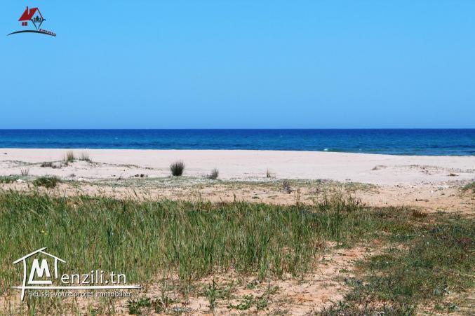 un terrain pieds dans l'eau à El haouaria