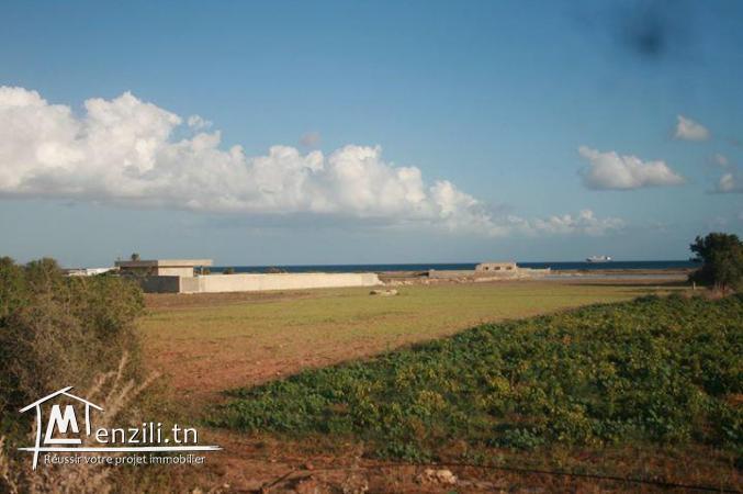 Terrain à vendre à Bizerte
