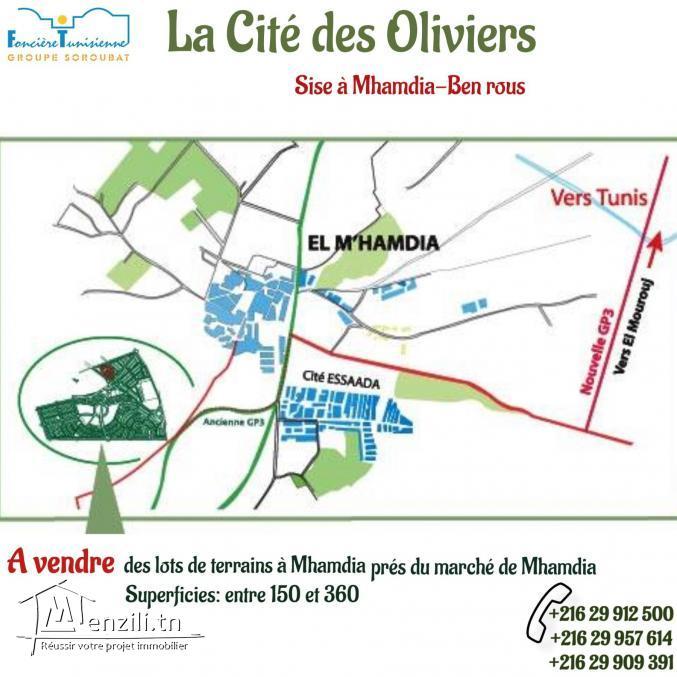 Lotissement la Cité des Oliviers à Mhamdia