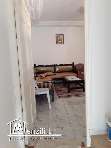 S+1 meublé