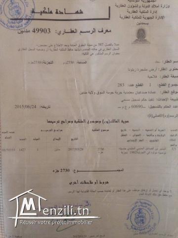 terrain a vendre a Djerba