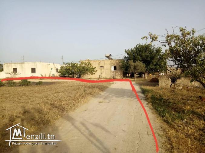 أرض للبيع 1064م² بزاوية مرناق