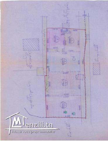 A vendre terrain à Djerba ( Midoun)