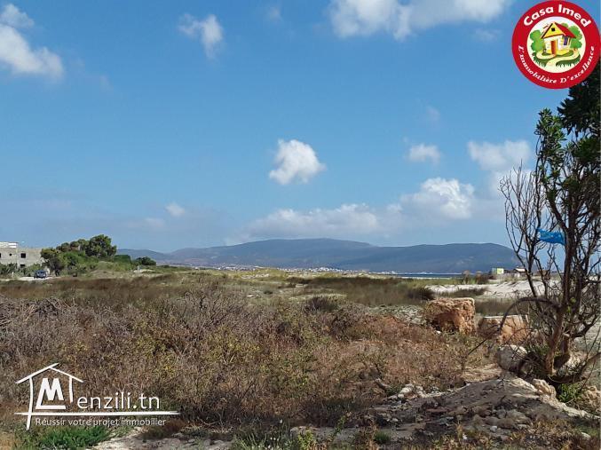 des lots de terrain à Dar Allouch