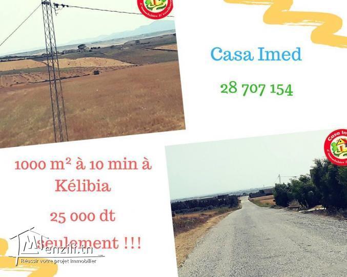 1000 m² à 10 min à Kélibia