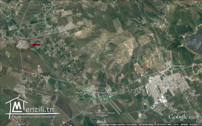A vendre, terrain nu à bâtir à Sidi ali Hattab 180dt le m2