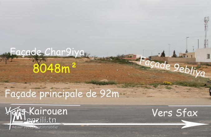Vente à Sfax pour les résidents à l'étranger.