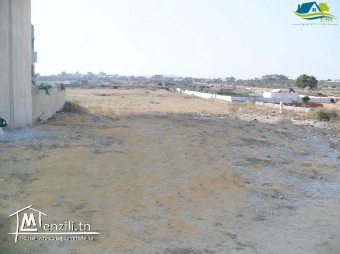 terrain de 520 m² à kélibia