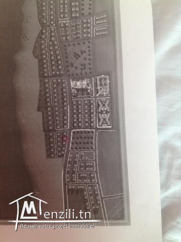 A vendre terrain à JINENE BENI KHIAR