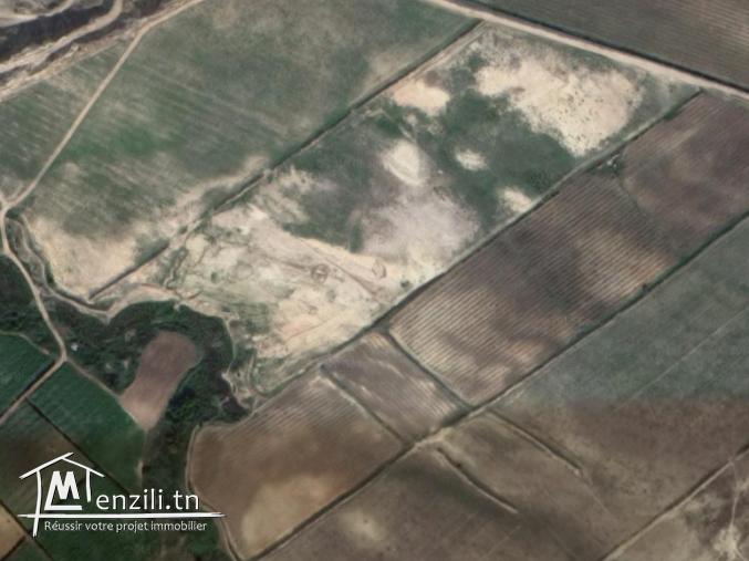 terrain route Tunis-Nabeul