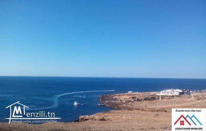 Terrain touristique orienté de la mer de 311m2