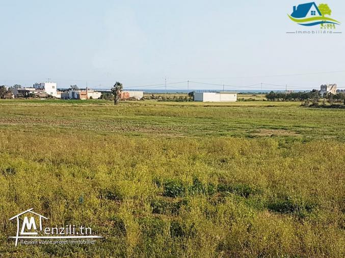 أرض للبيع قريبة من بحر عين قرنز  ومعها شهادة ملكية