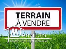 À Vendre - Terrain - Sidi Alouane-Mahdia