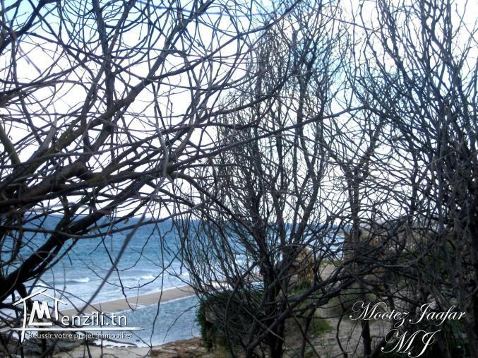 Terrain forêt/plage 1972 m2