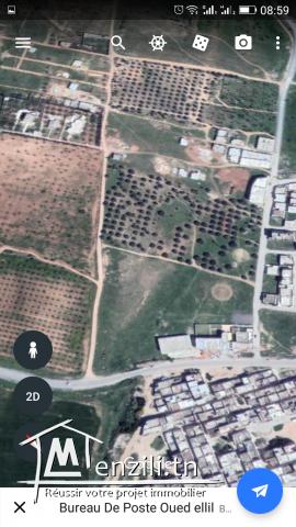 Terrain a 150dt/m²