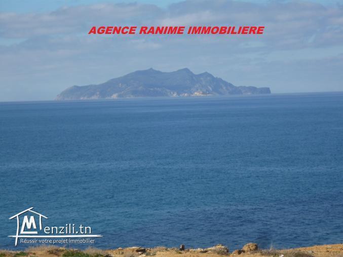 Villa vue de mer a el haouaria de 300m2
