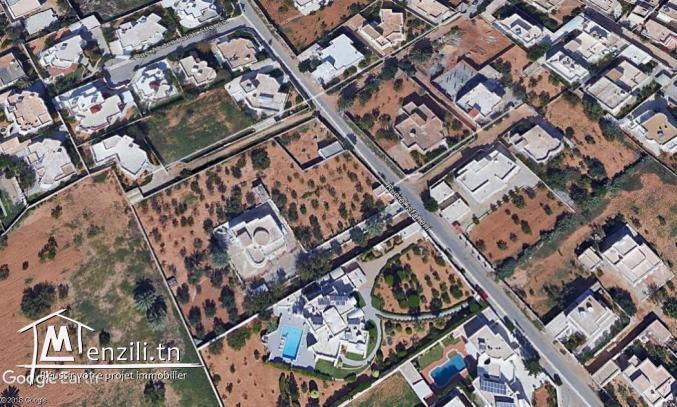Terrain entre Caid M'hamed et Gremda km 2,5