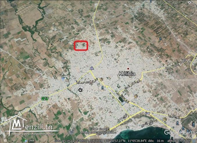 un terrain a vendre à kélibia 50522361