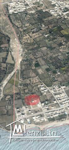 Vente terrain 300m2 a Jinen beni Khiar