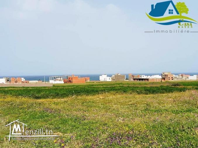 terrain de 4000 m² à zahra