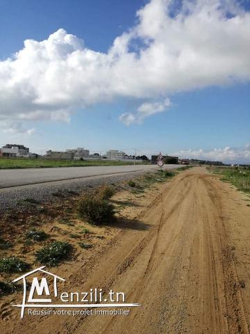 terrain a vendre sur la route principale a la plage ain grinz