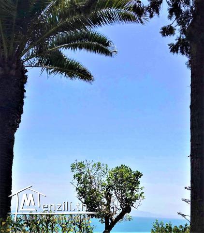 Somptueuse villa à Carthage avec vue sur mer