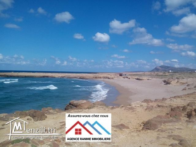 Villa neuf ds 200m2 a la mer d'el haouaria
