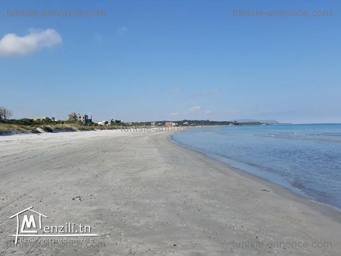terrain sur la route 300m a la plage hammem jabli