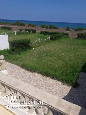 terrain vue sur mer a la plage kerkouane