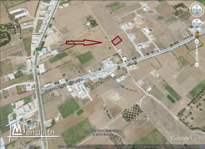 terrain a vendre entre kélibia et hammem ghzez 50522361