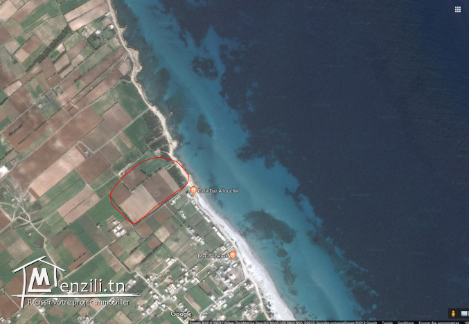 Terrain à vendre kélibia (Dar Allouch plage)95885014