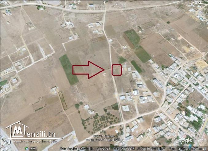 un terrain à vendre à mansoura kélibia pour plus d'info 50522361