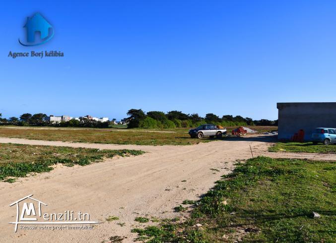 Terrain à vendre Kélibia(Dar Allouch plage) 95885014