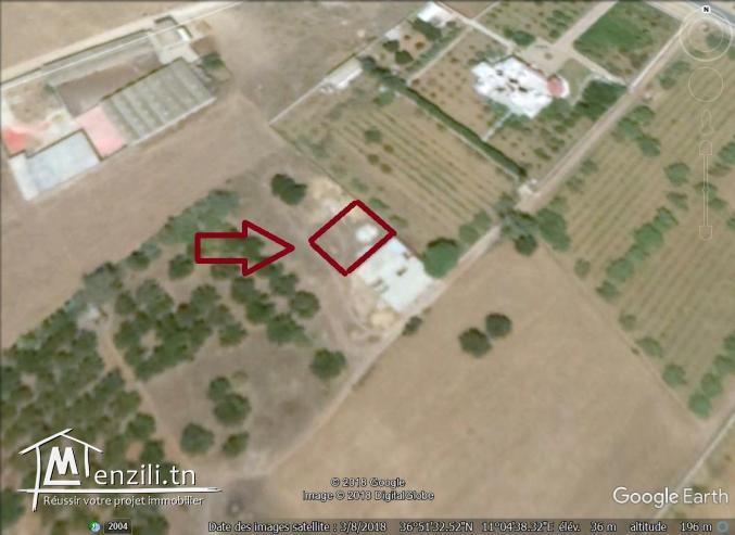un terrain à vendre à kélibia  50522361
