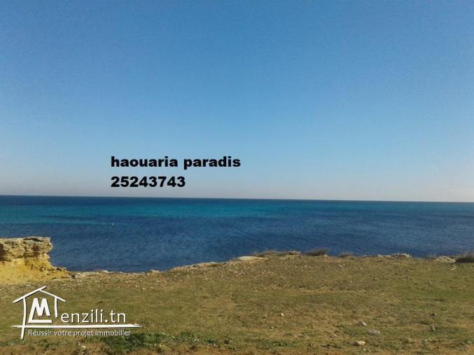 terrain 1ére position  la plage dar allouch titre bleu