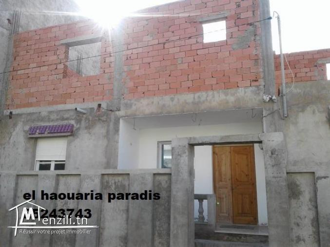 villa de surface 300m² a el haouaria centre ville